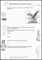 AB 12 – Wie Phoenix aus der Asche